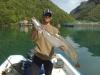 hardanger-fjord-leng-96cm-9-pfund-juni-09
